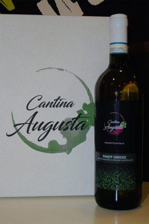 Pinot Grigio - vini bianchi- cantina augusta